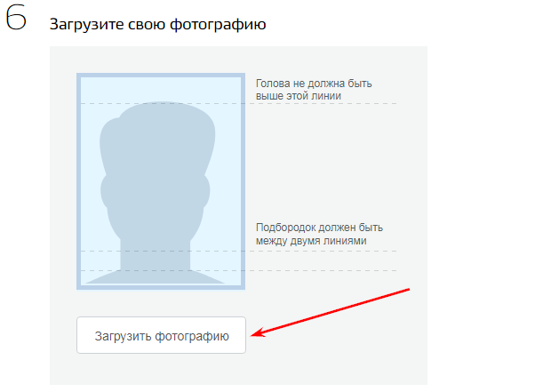 Редактор паспорта онлайн