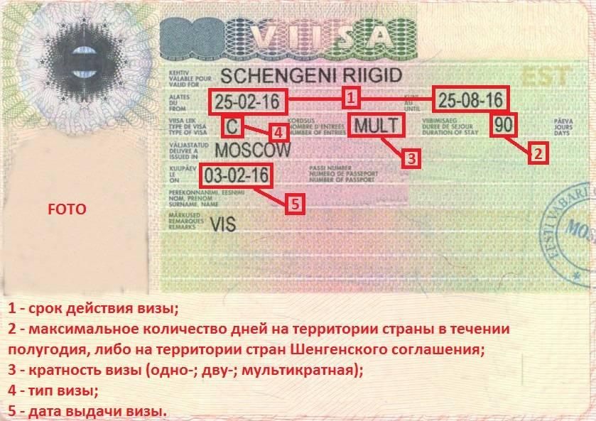 Срок шенгенской визы