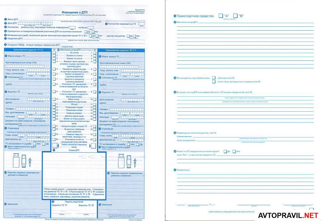 Онлайн сервис гибдд по проверки водительского удостоверения