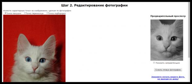 Фото для паспорта онлайн бесплатно