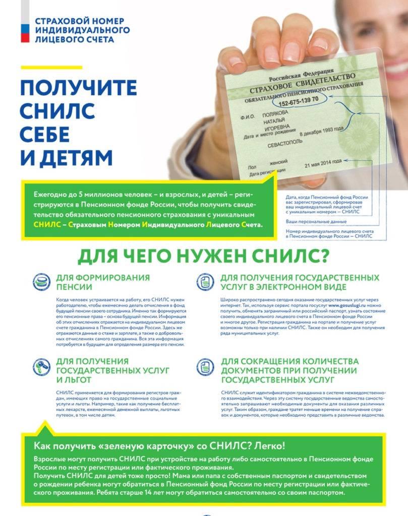 Как узнать свой снилс по паспорту
