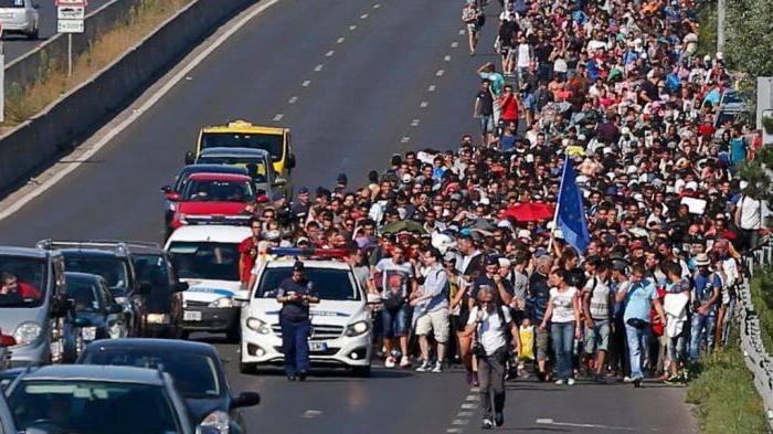 Виды миграции
