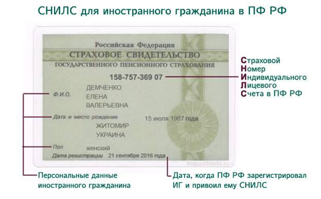 Как гражданину украины получить снилс в россии