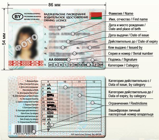 Беларусь водительское удостоверение
