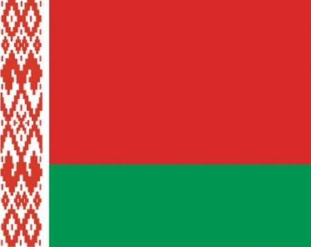Документы для поездки в белоруссию