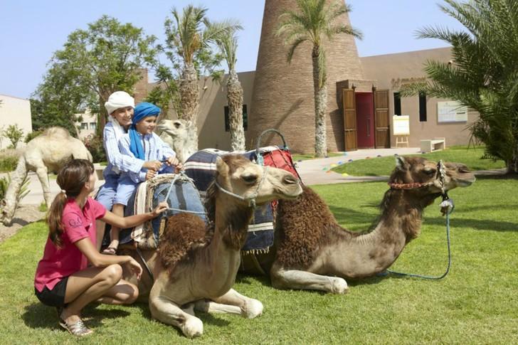 Марокко виза нужна